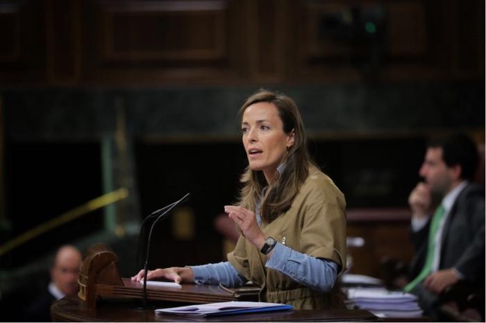 Carmen Navarro, en el Congreso de los Diputados.