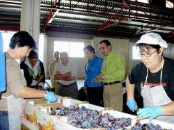 Visita a la Cooperativa Santiago Apóstol de Isso.