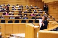 Rosario Rodríguez, senadora del PP por Albacete, durante su intervención en el Senado.